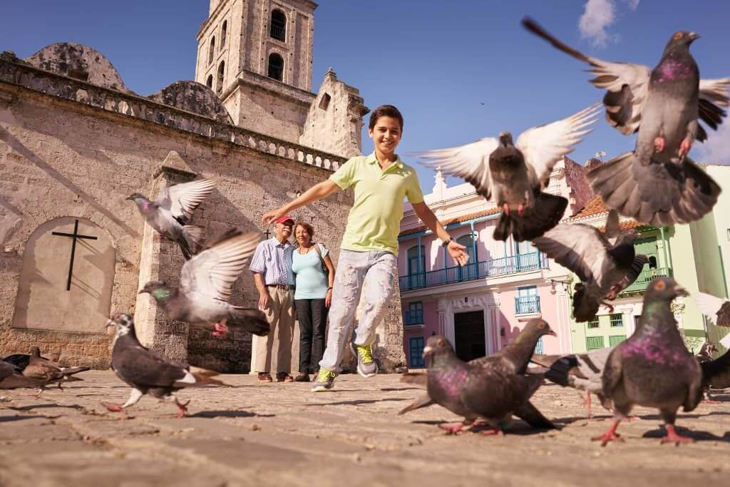 Kid with Birds in Havana