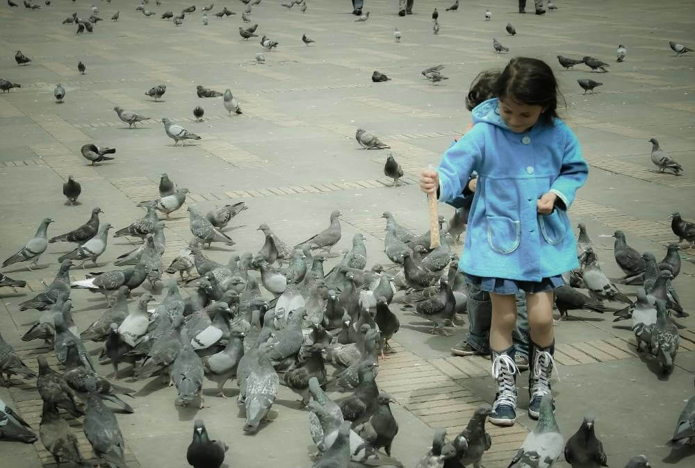 Girl Feeding Birds at Bolivar Square
